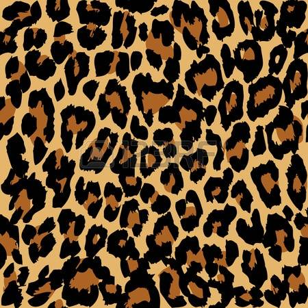 4,445 Leopard Print Stock Vector Illustration And Royalty Free.