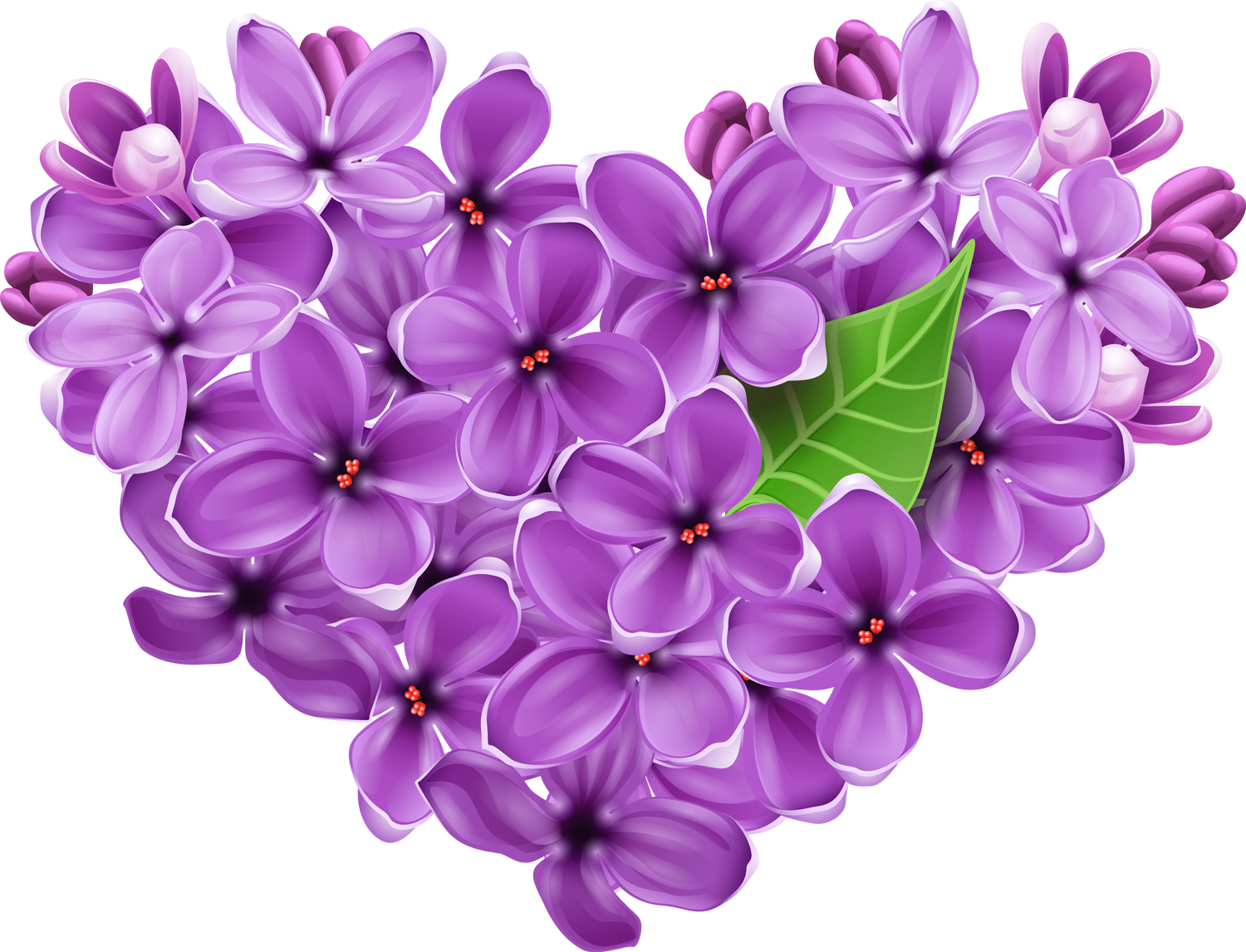 Free Lilac Flower Transparent, Download Free Clip Art, Free.