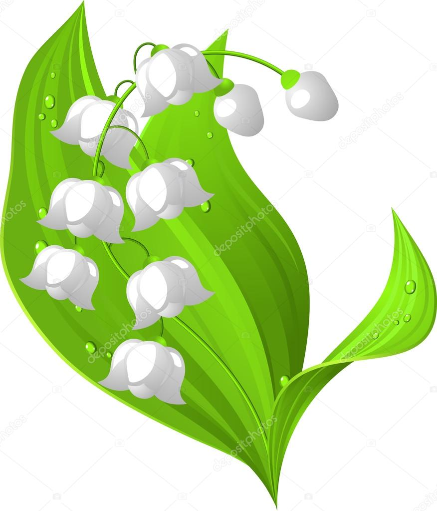 Lily of the valley Stock Vectors, Royalty Free Lily of the valley.