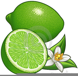 Free Clipart Of Limes.