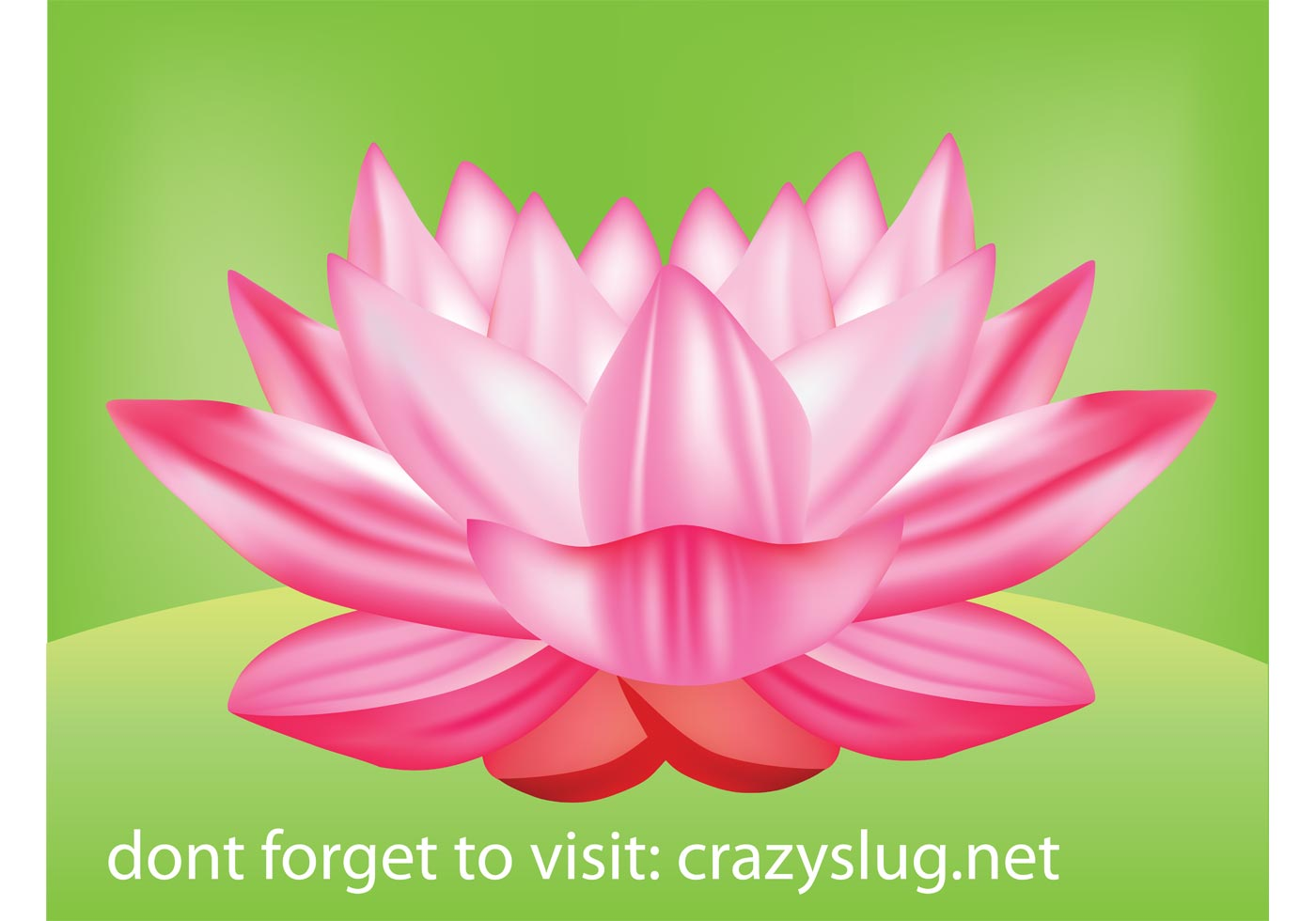 Lotus Free Vector Art.