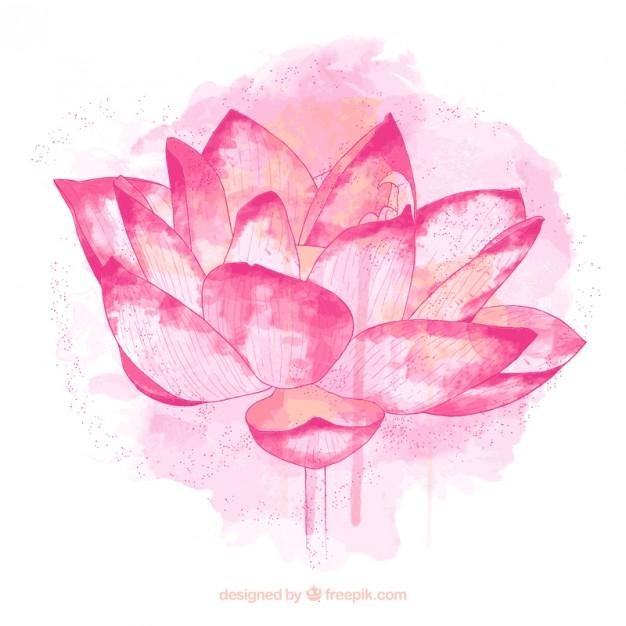 lotus flower illustration free #16