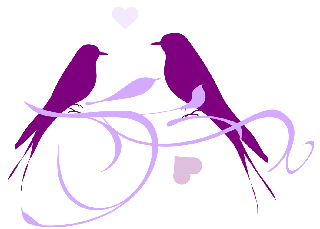 Lovebird Owl Clip art.