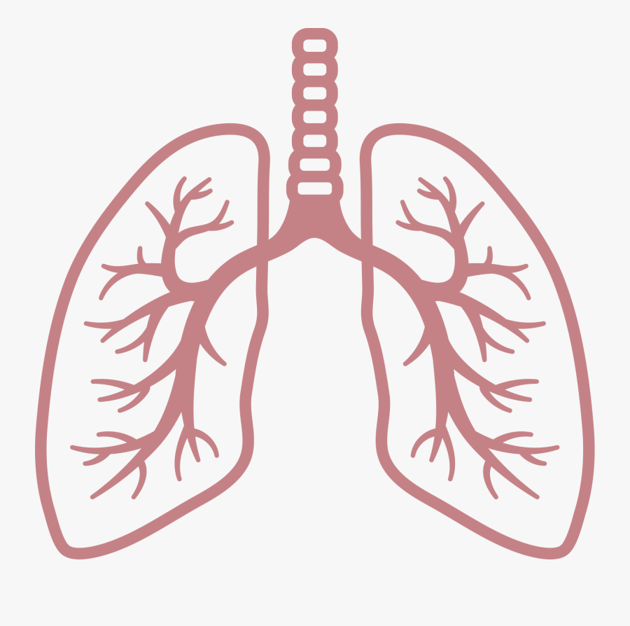 Clip Royalty Free Breathing Clipart Respiratory Rate.
