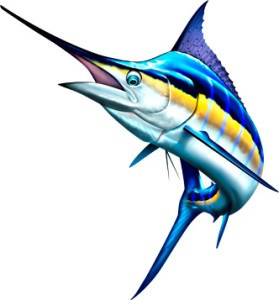 Marlin Fish Vector at GetDrawings.com.