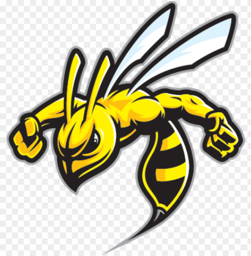 hornet clipart wasp sting.