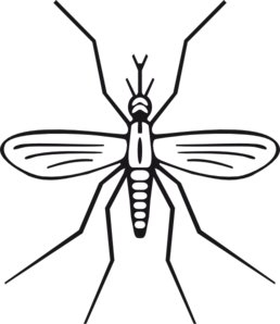 Free Mosquito Cliparts, Download Free Clip Art, Free Clip.
