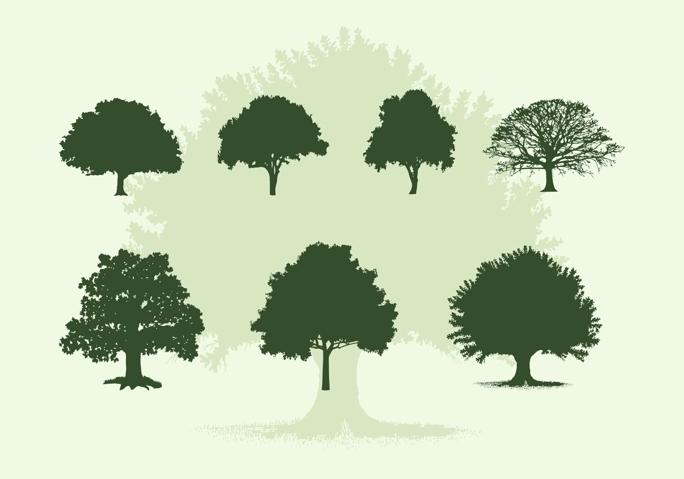 Various Oak Trees Vector Silhouettes Free Download.