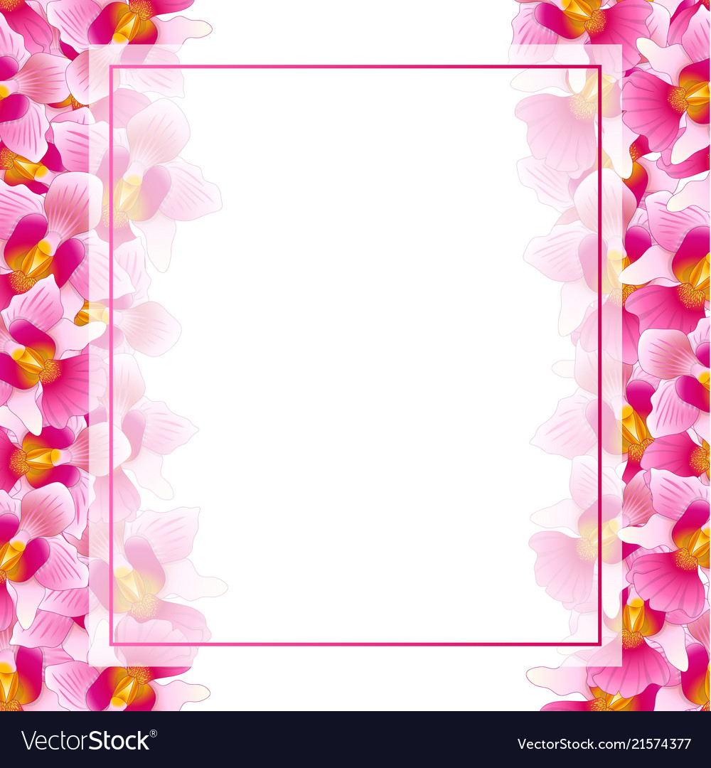 Pink vanda miss joaquim orchid banner card border.