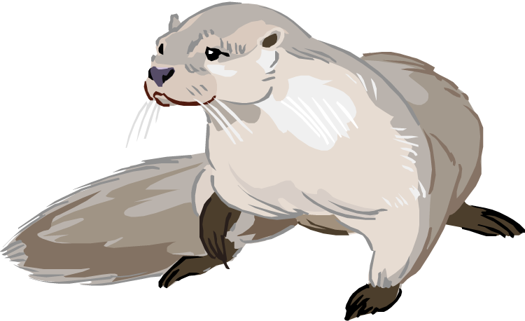 Free Otter Cliparts, Download Free Clip Art, Free Clip Art.