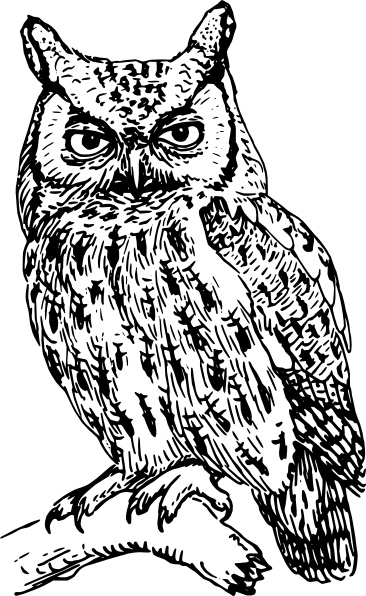 Owl clip art Free vector in Open office drawing svg ( .svg.