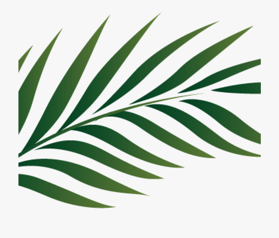 Palm Clipart Palm Branch Image Free Cliparts That You.