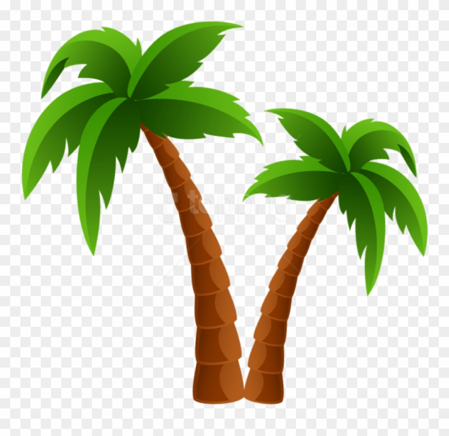 Free Png Download Two Palm Trees Png Images Background.