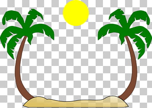 Arecaceae Tree Free content , Summer Borders s PNG clipart.