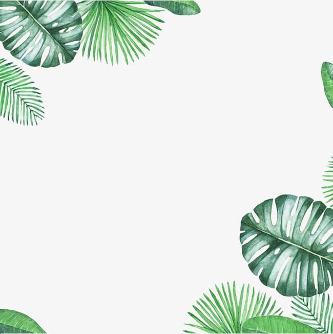 Green fresh leaf border texture PNG clipart.