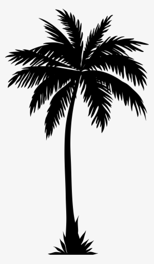 Palm Tree Silhouette PNG Images.