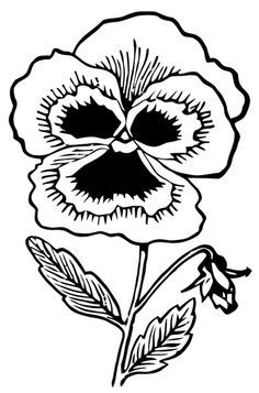 Pansy Clipart outline 1.