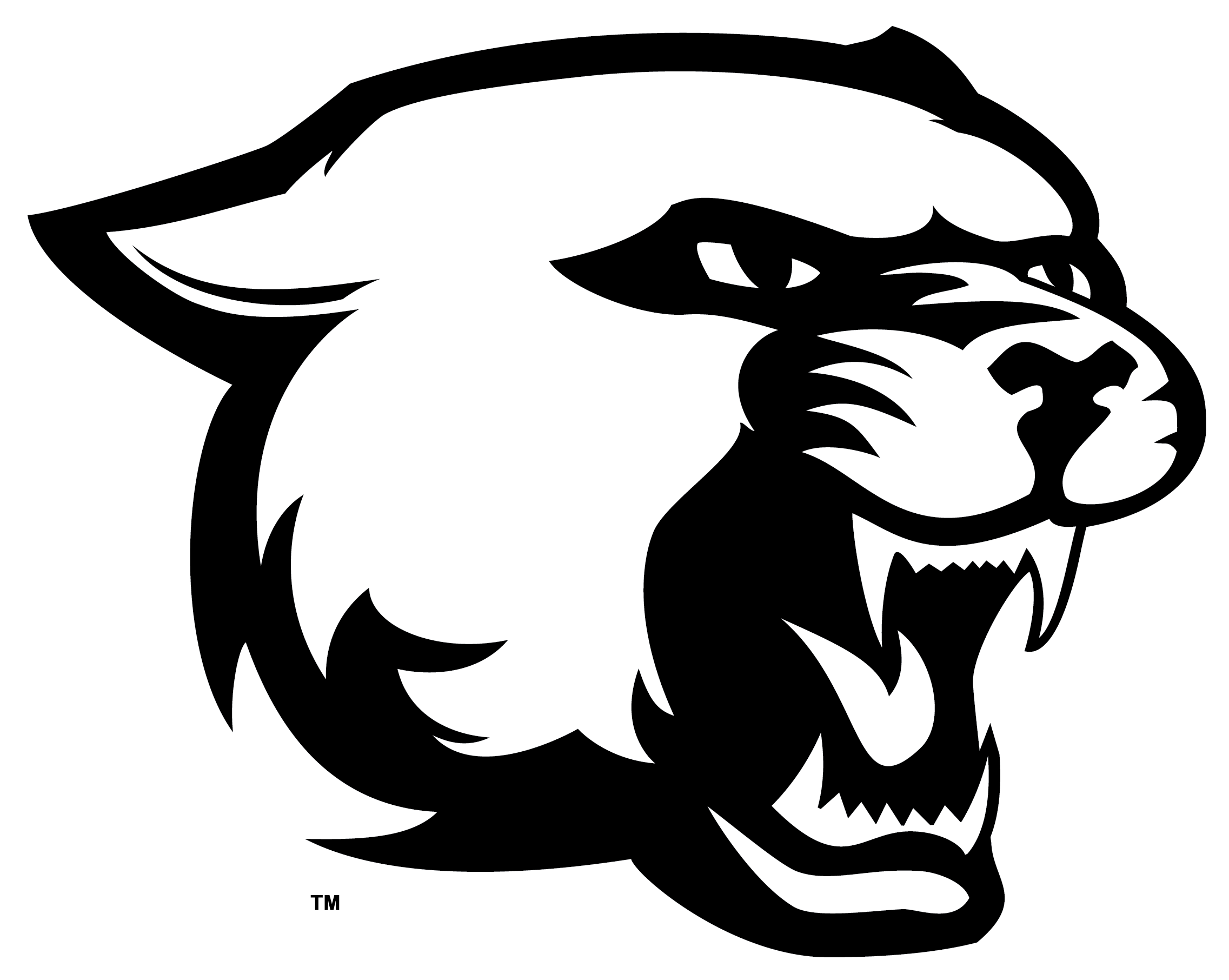 Hd Free Panther Head Clipart Image.
