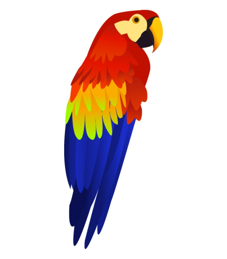 Free Parrot Clipart.