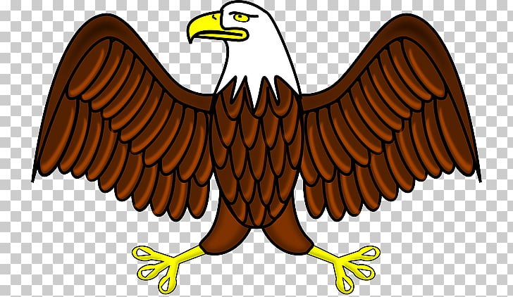 Bald eagle graphics White.