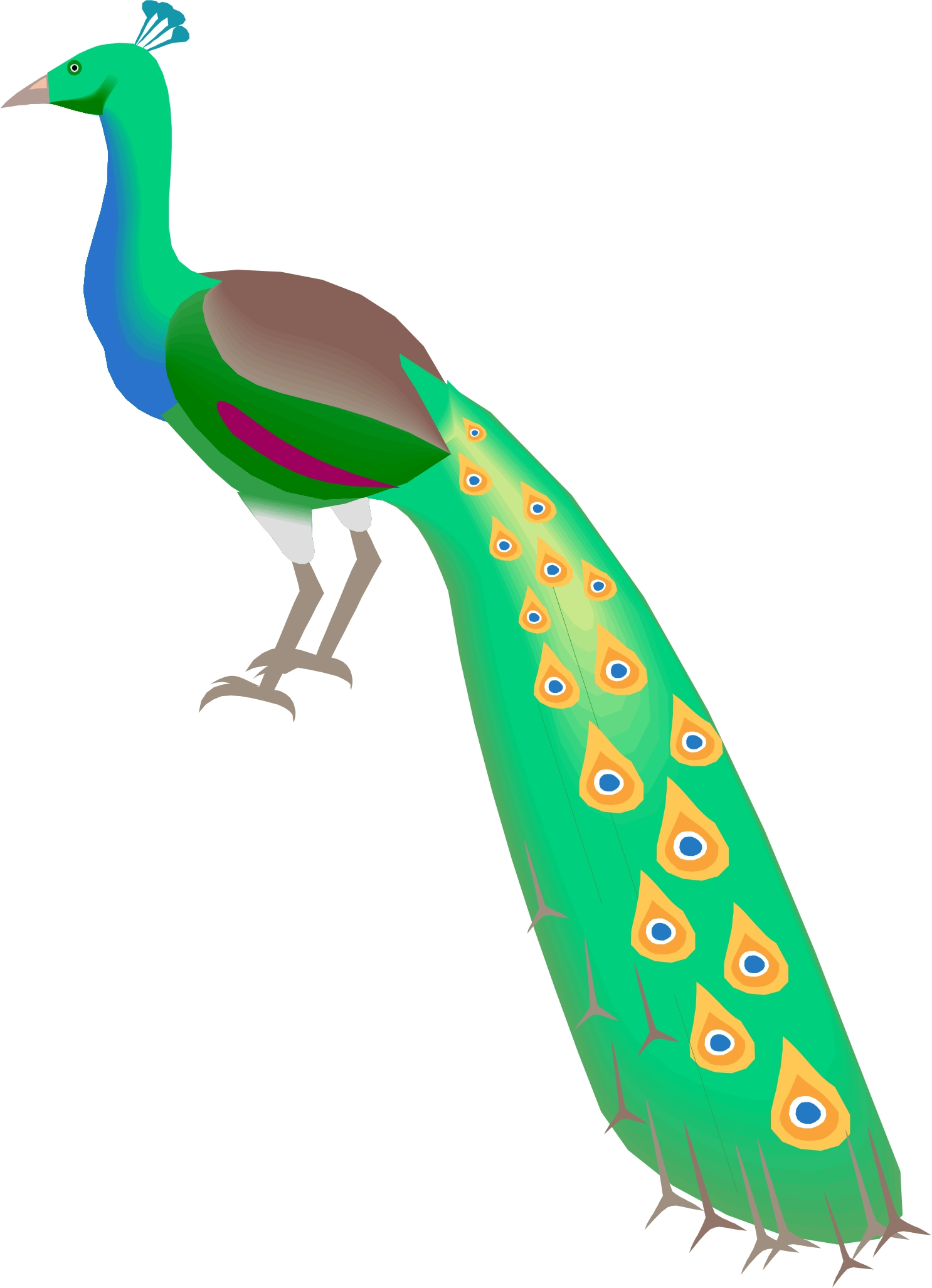 Free peacock clipart 2.
