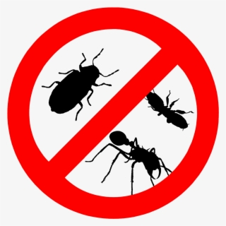 Free Pest Clip Art with No Background.