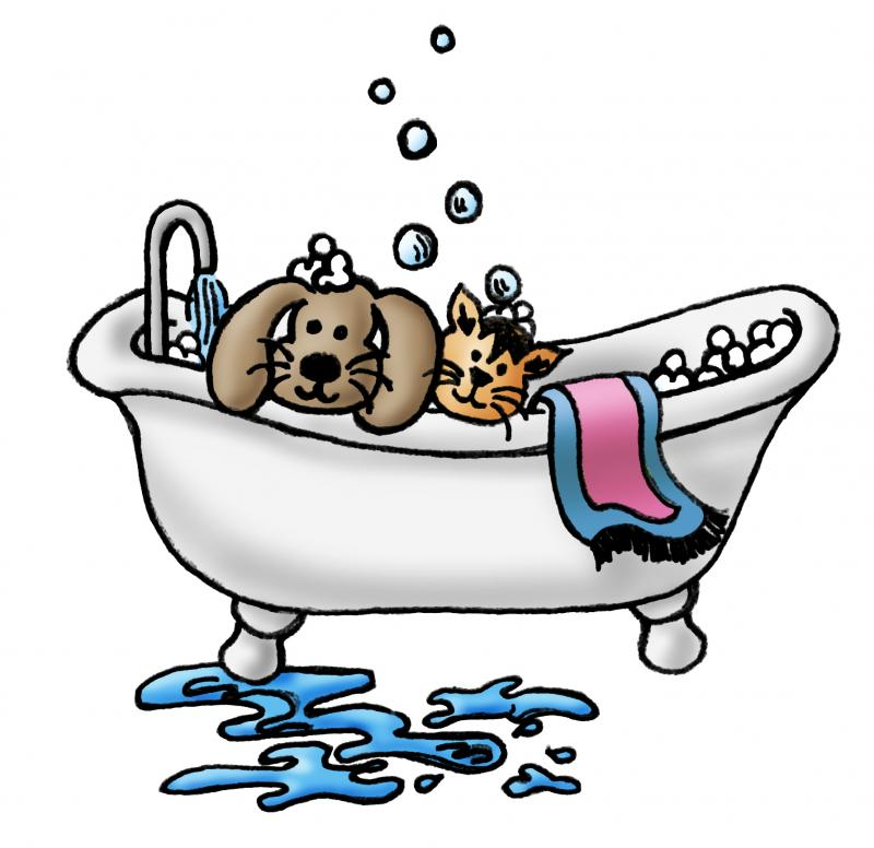 Free Dog Grooming Art, Download Free Clip Art, Free Clip Art.