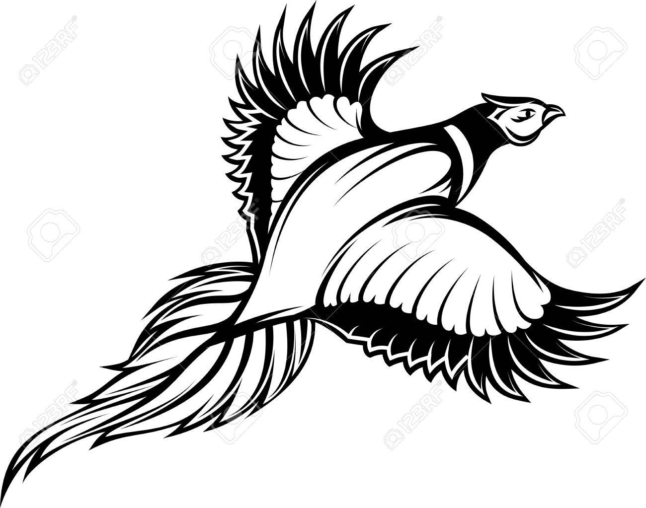 vector illustration of a stylish monochrome flying pheasant..