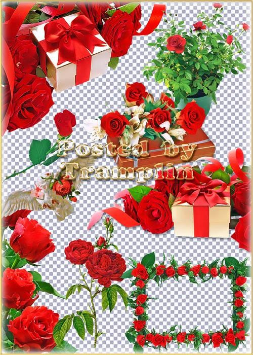Clipart red roses PNG online download » Photoshop.