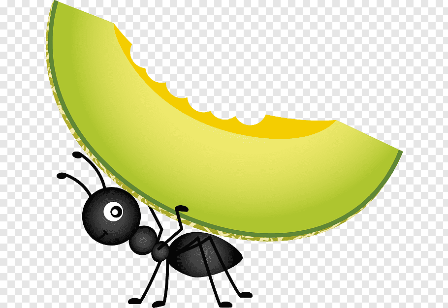 Black ant carrying sliced fruit illustration, Food Picnic.