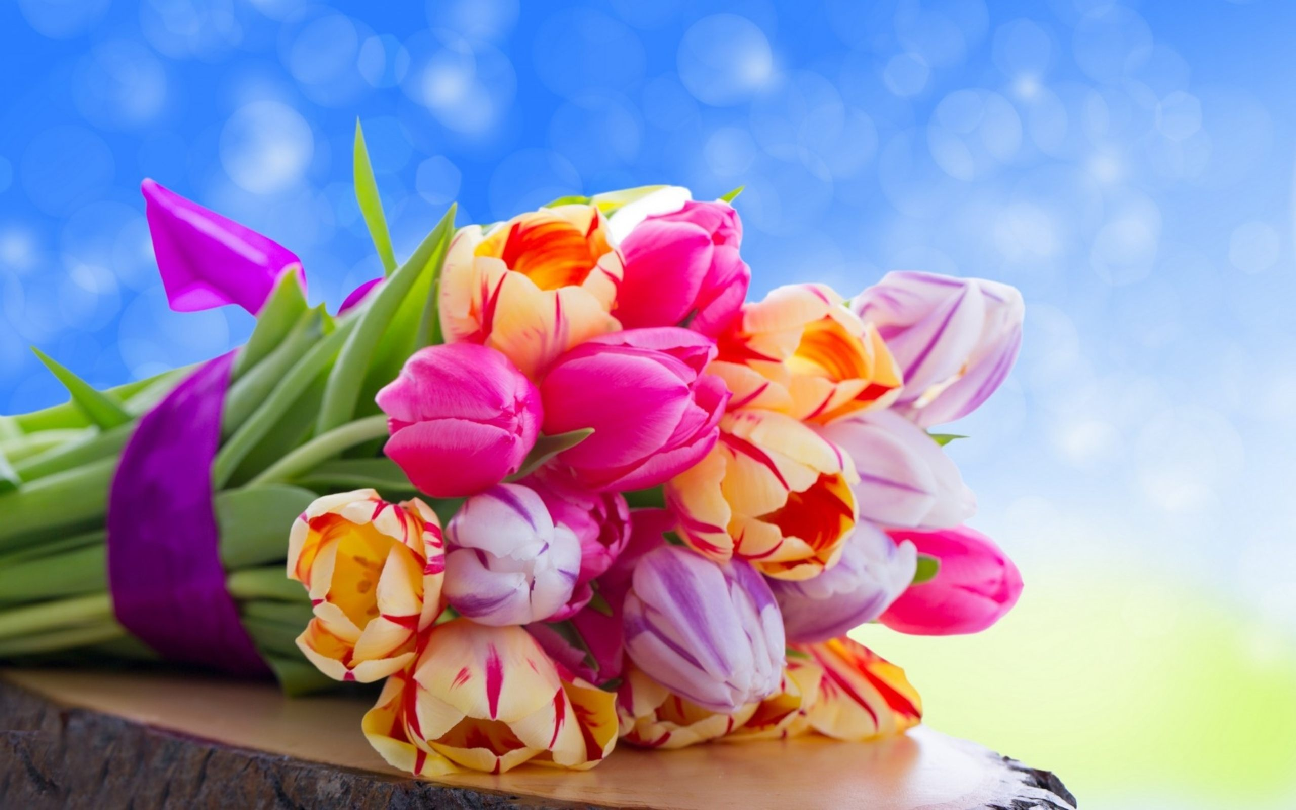 Free Pictures Of Colorful Flowers.