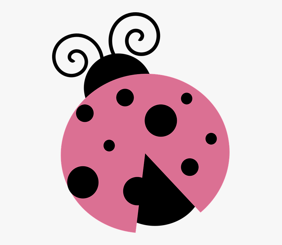 Lady Bug April Insect Dots Pink.