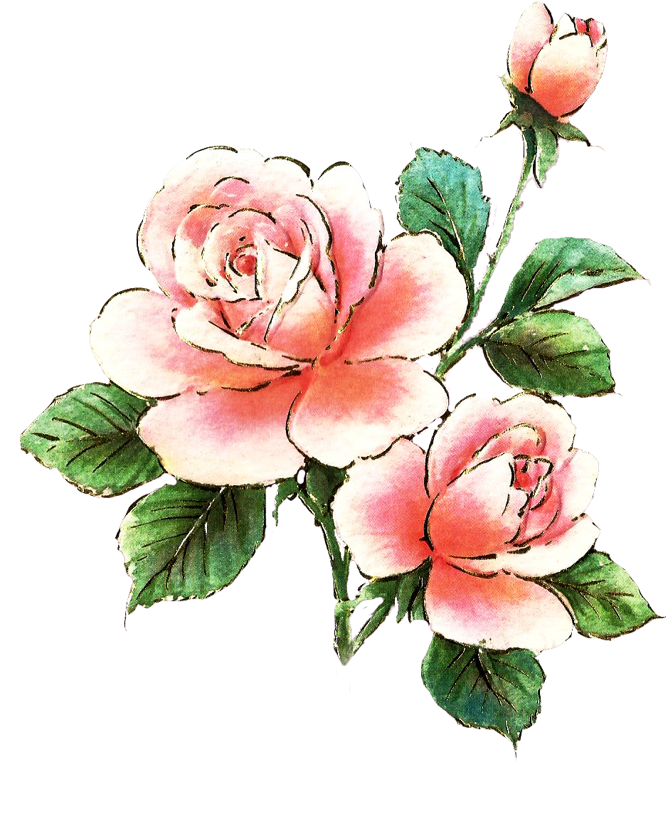 Free Picture Of A Pink Rose, Download Free Clip Art, Free.