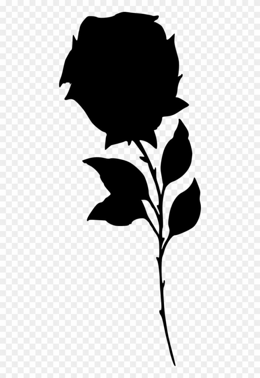 Png Black And White Download Rose Png Free Images.