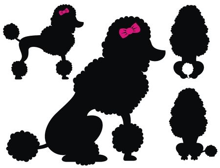 1,042 Poodle Silhouette Stock Illustrations, Cliparts And Royalty.