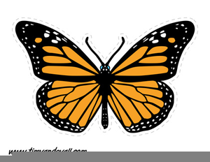 Printable Butterfly Clipart.