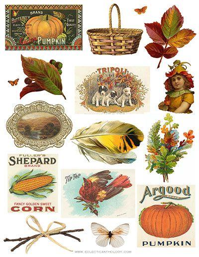FREE Vintage Autumn Clip Art Collage Sheet.