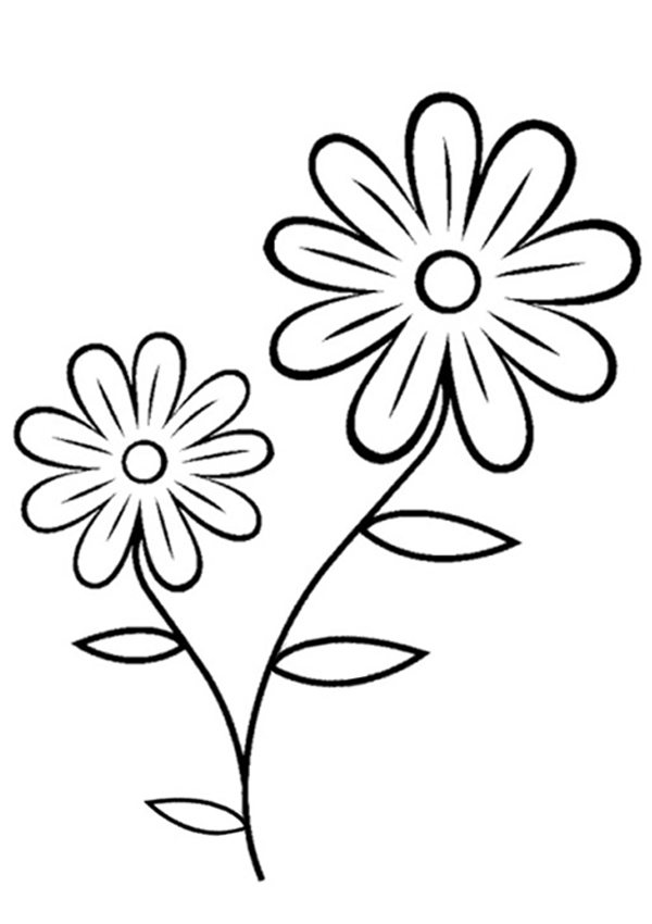 Flower Coloring Pages Free : Free Flower Coloring Page. Chic.