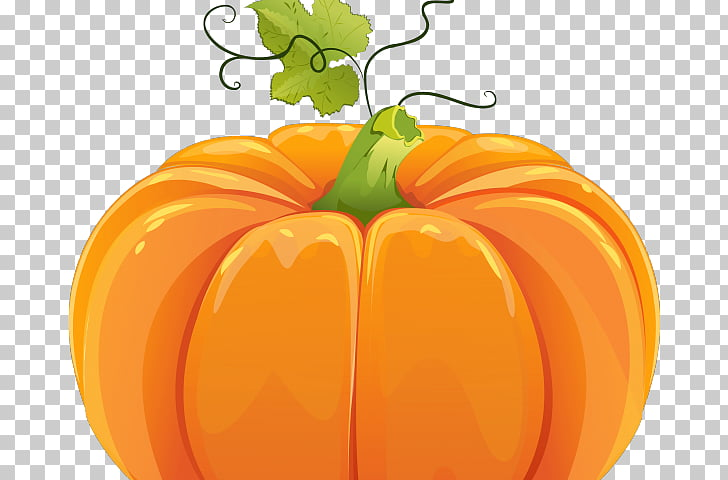 Field pumpkin graphics Portable Network Graphics, snake in.