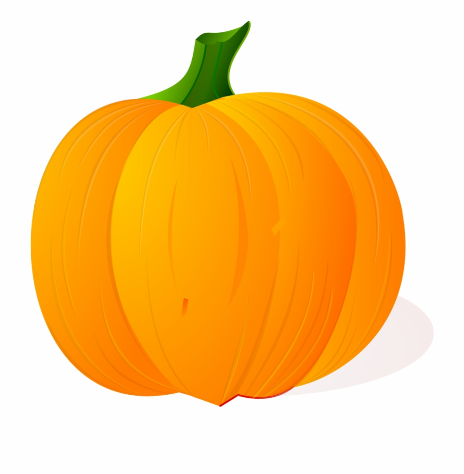 Free Download High Quality Pumpkin Vector Png Image.