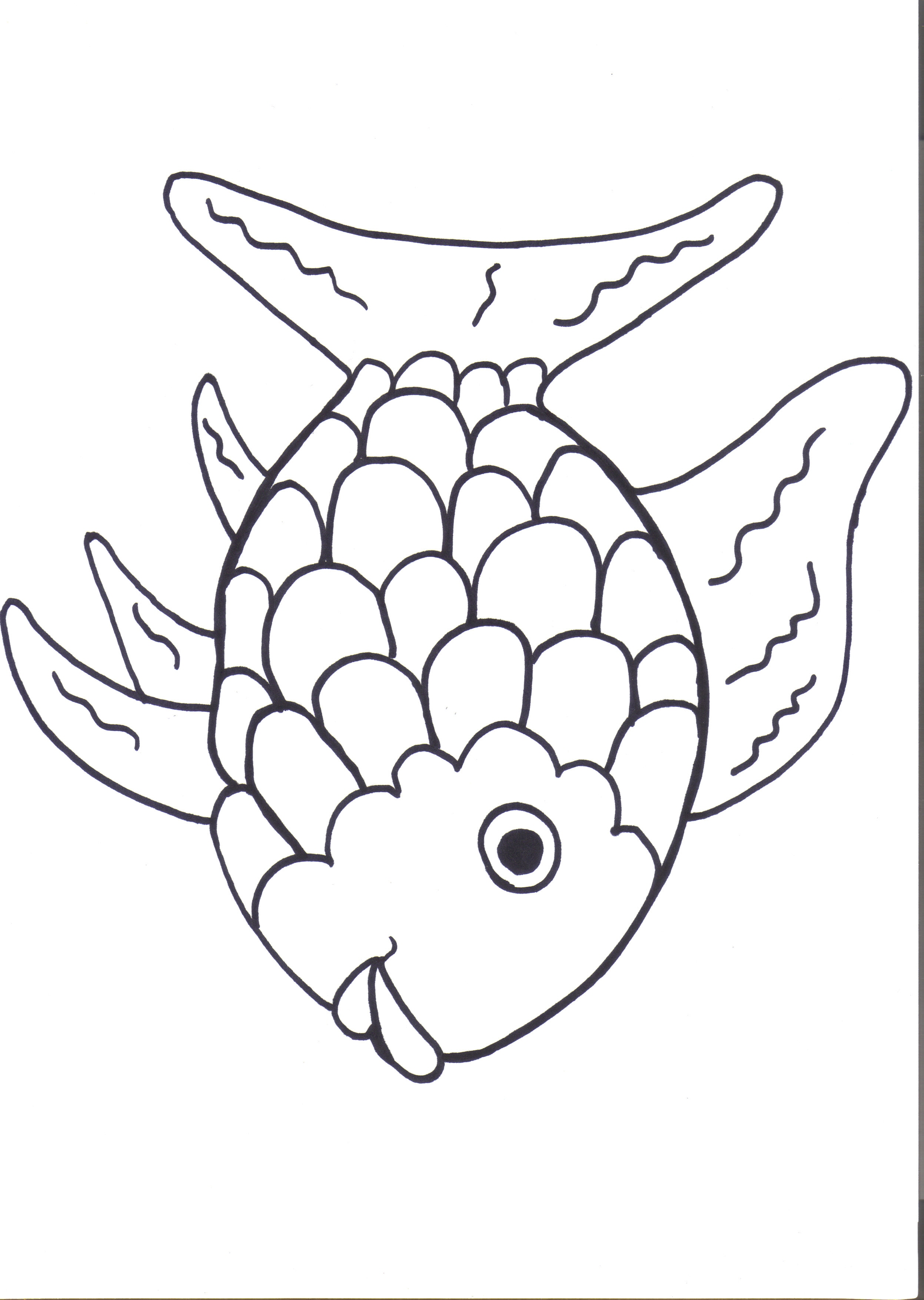 Free Rainbow Fish Outline, Download Free Clip Art, Free Clip.