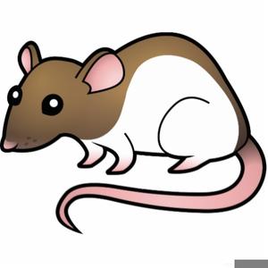 Rats Clipart Free.