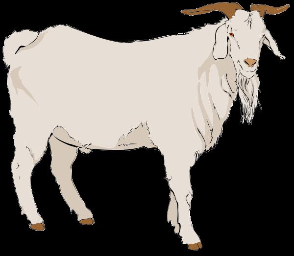 Free Realistic Goat Clip Art.