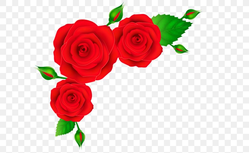 Rose Red Clip Art, PNG, 600x503px, Rose, Artificial Flower.