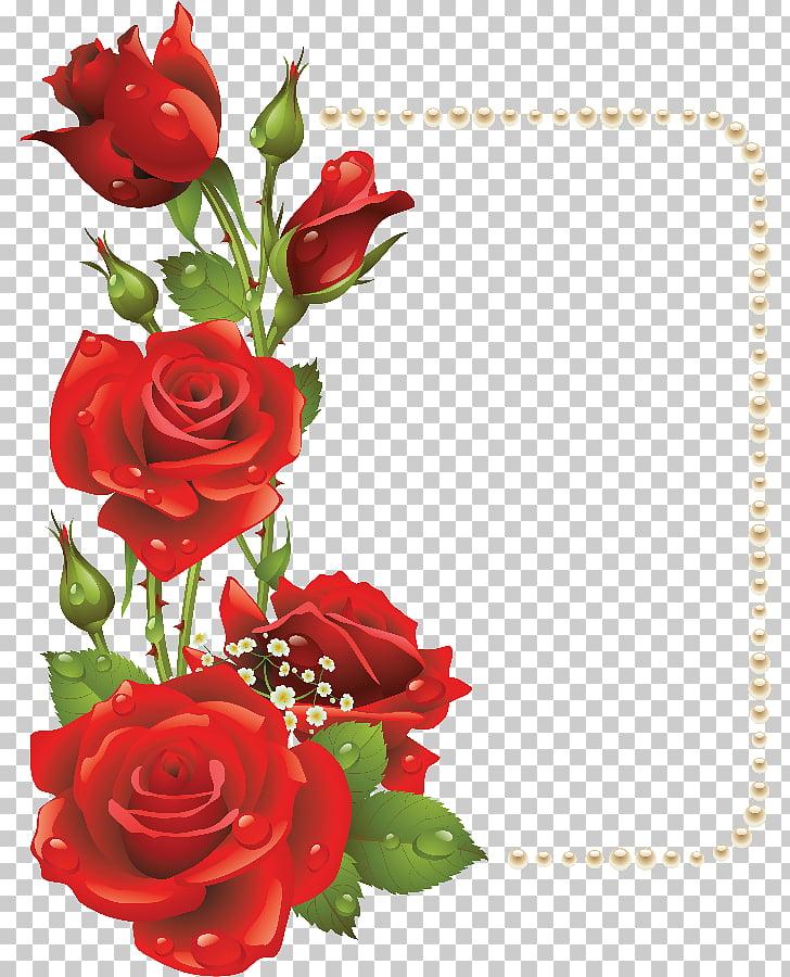 Flower Frames Rose , red rose border, five red roses PNG.