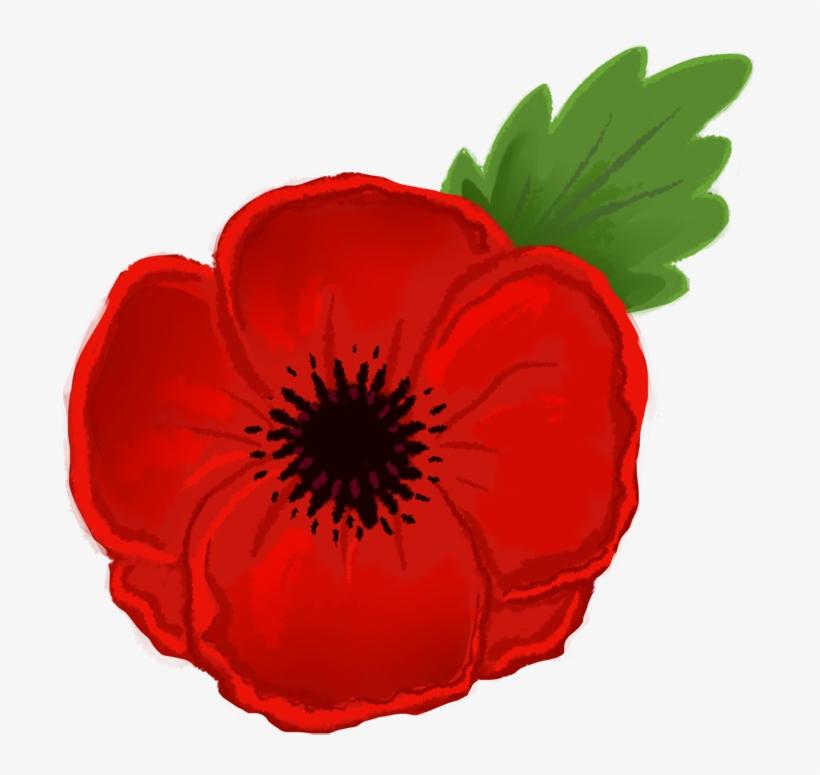 Red Poppy Clipart.