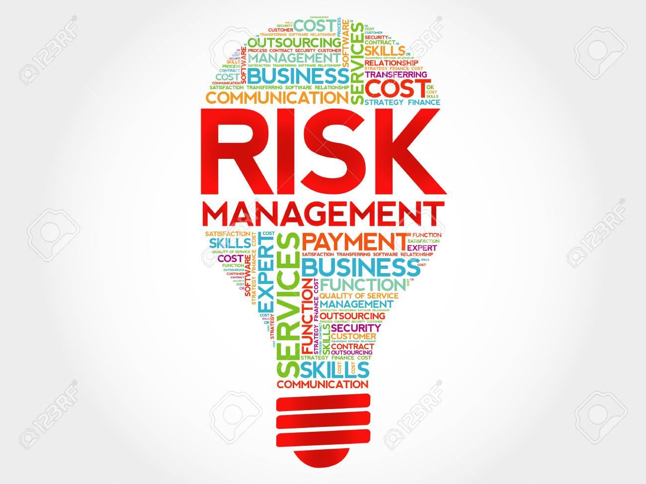 Risk Management bulb word cloud, business concept.