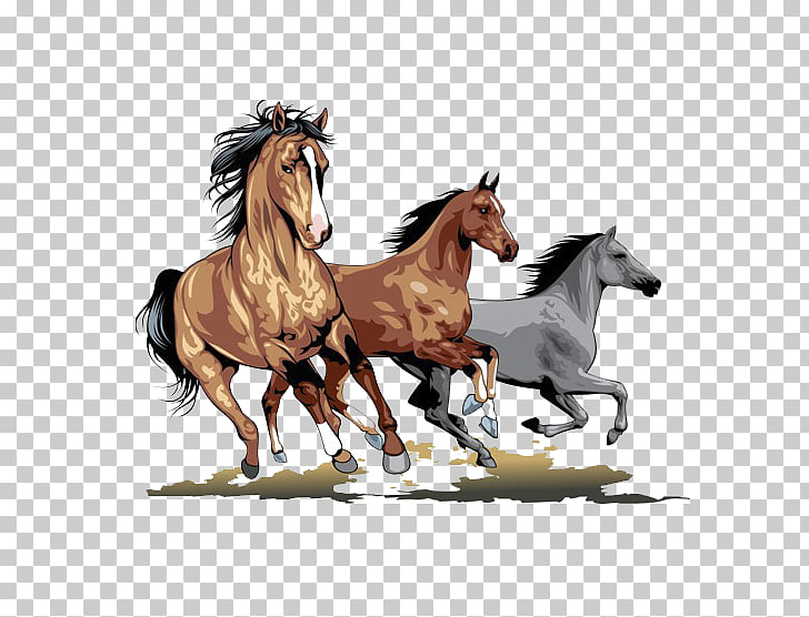 Horse Stallion , Running horse PNG clipart.