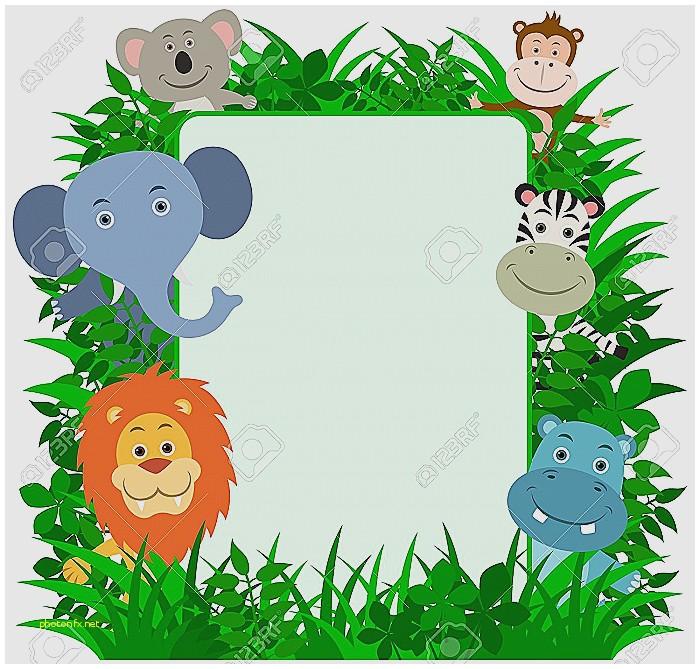 Jungle Border.