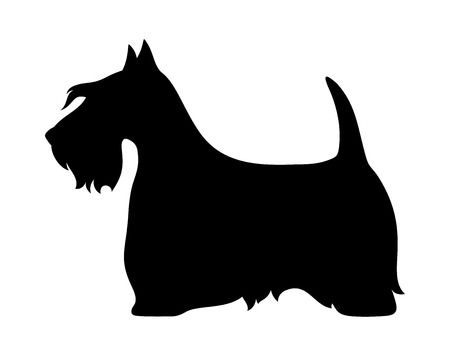 227 Scottish Terrier Black Stock Illustrations, Cliparts And Royalty.